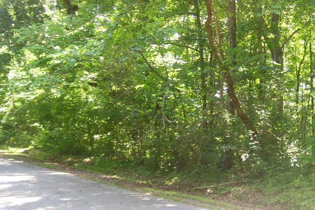 250 Riverview, Jasper, 37347, TN - Photo 1 of 7