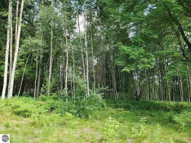 Lot 22 Distel, Hale, 48739, MI - Photo 1 of 6