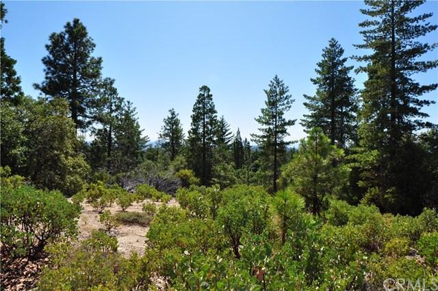 0 Isham, Berry Creek, CA - Photo 1 of 7